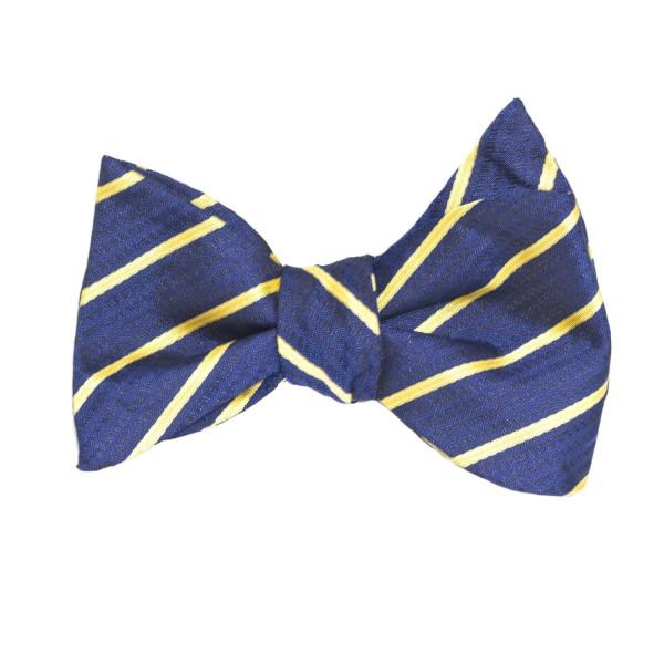 Fliege für Männer aus Seide blau gelb gestreift