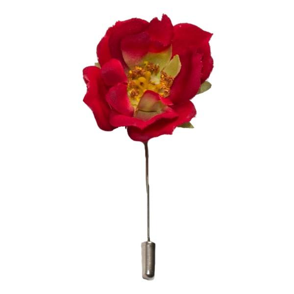Ansteckblume Wildrose